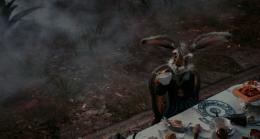 photo 27/527 - Alice au pays des Merveilles - © Walt Disney Studios Motion Pictures France