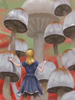 photo 59/527 - Alice au pays des Merveilles - © Walt Disney Studios Motion Pictures France