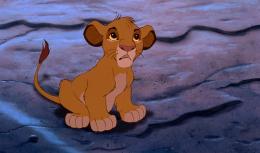 photo 20/44 - Le Roi Lion - © Walt Disney Home Entertainment