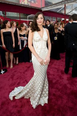 photo 317/393 - 80�me C�r�monie des Oscars 2008 - Marion Cotillard - © A.M.P.A.S.