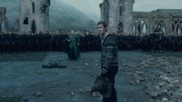 photo 35/132 - Ralph Fiennes, Matthew Lewis - Harry Potter et Les Reliques de la Mort - 2ème Partie - © Warner Bros