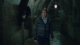 photo 9/132 - Matthew Lewis - Harry Potter et Les Reliques de la Mort - 2ème Partie - © Warner Bros