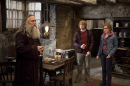 photo 54/132 - Ciarán Hinds, Rupert Grint, Emma Watson - Harry Potter et Les Reliques de la Mort - 2ème Partie - © Warner Bros
