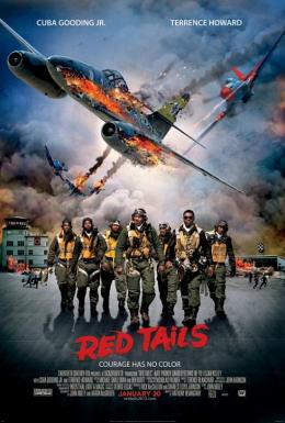 photo 3/8 - Red Tails
