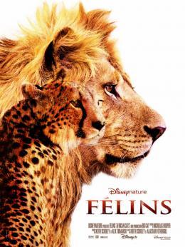 photo 36/37 - F�lins - © Walt Disney Studios Motion Pictures France