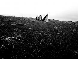 photo 8/14 - Le chant des oiseaux