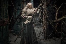 photo 7/98 - Ian McKellen - Le Hobbit : La désolation de Smaug - © Warner Bros