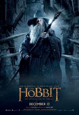 photo 91/98 - Ian McKellen - Le Hobbit : La désolation de Smaug - © Warner Bros