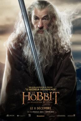 photo 73/98 - Ian McKellen - Le Hobbit : La désolation de Smaug - © Warner Bros