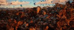photo 28/98 - Martin Freeman - Le Hobbit : La d�solation de Smaug - © Warner Bros