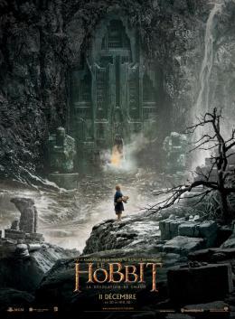 photo 64/98 - Le Hobbit : La d�solation de Smaug - © Warner Bros