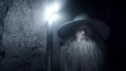 photo 11/98 - Ian McKellen - Le Hobbit : La désolation de Smaug - © Warner Bros