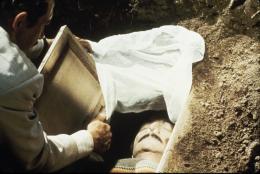photo 6/10 - Apportez-moi la tête d'Alfredo Garcia - © Filmedia