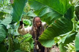 photo 38/140 - Johnny Depp - Pirates des Caraïbes : La fontaine de Jouvence - © Walt Disney Studios Motion Pictures France