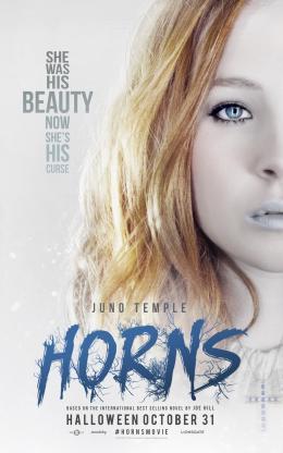 photo 35/36 - Horns