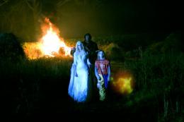 photo 20/29 - Halloween 2 - © Wild Side Video