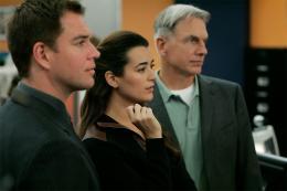 NCIS Enquêtes spéciales - Saison 5 Michael Weatherly, Cote De Pablo, Mark Hammond, Saison 5 photo 7 sur 7