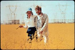 photo 5/7 - Albert Finney, Audrey Hepburn - Voyage à Deux - © Les Acacias