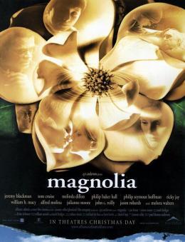 Magnolia photo 2 sur 2