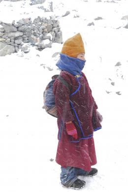 photo 6/7 - Himalaya, le chemin du ciel - © ZED