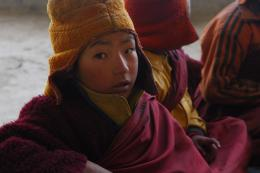 photo 1/7 - Himalaya, le chemin du ciel - © ZED