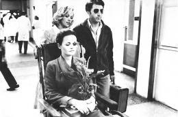 photo 12/14 - Dustin Hoffman et Valerie Perrine - Lenny - © Splendor films