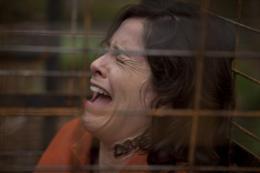 Cristina Rosato Territoires photo 1 sur 1