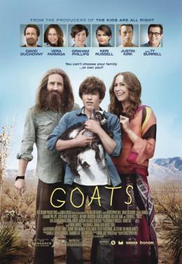 Goats photo 6 sur 6