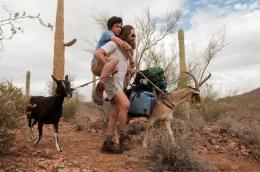 Graham Phillips Goats photo 1 sur 3