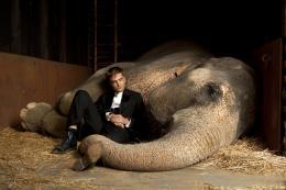 photo 6/18 - Robert Pattinson - De l'eau pour les �l�phants - © 20th Century Fox