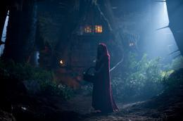 photo 47/70 - Amanda Seyfried - Le Chaperon Rouge - © Warner Bros