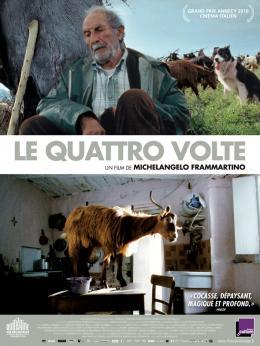 photo 11/11 - Le Quattro Volte - © Les Films du Losange