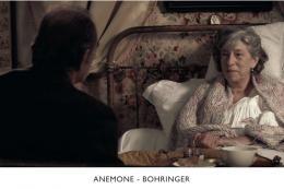 Richard Bohringer Les Amours secrètes photo 9 sur 21