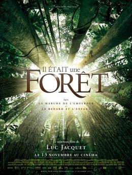 photo 6/6 - Il était une forêt - © Walt Disney Studios Motion Pictures France