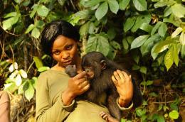 photo 47/66 - Bonobos - © SND