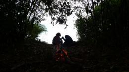 photo 44/66 - Bonobos - © SND