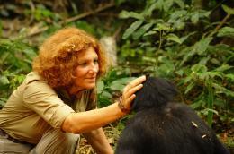 photo 24/66 - Claudine Andr� - Bonobos - © SND