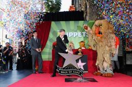 photo 1/41 - Remise de leur �toile sur Hollywood Boulevard - Les Muppets, le retour - © Disney