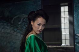 photo 16/45 - Rinko Kikuchi - 47 Ronin - © Universal Pictures International France