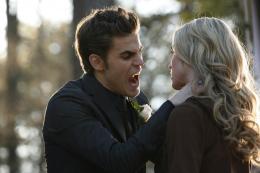 photo 15/17 - Paul Wesley - Vampire Diaries - Saison 1 - © Warner Home Vidéo