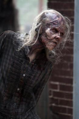 photo 14/48 - Saison 5 - The Walking Dead - Saison 5 - © AMC