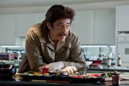 photo 3/27 - Benicio Del Toro - Savages - © Path� Distribution