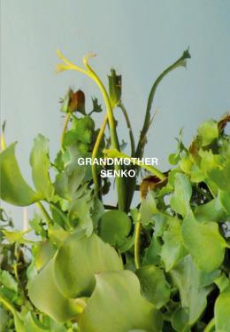 photo 1/6 - Grandmother / Senko - © Lowave
