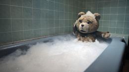 Ted photo 2 sur 20