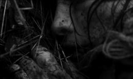 photo 8/10 - Boro In The Box - © Malavida