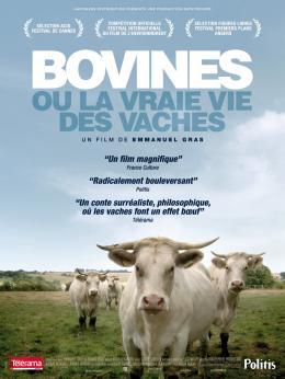 photo 9/9 - Bovines - © Happiness Distribution