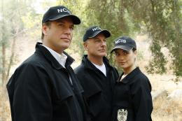 Cote de Pablo NCIS Enquêtes spéciales - Saison 7 photo 6 sur 21