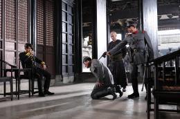 photo 5/12 - Shaolin - © Métropolitan Film Export