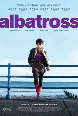 photo 1/1 - Albatross
