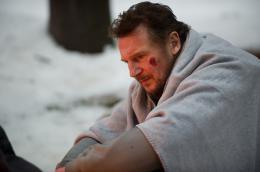 photo 16/27 - Liam Neeson - Le Territoire des loups - © Metropolitan Film